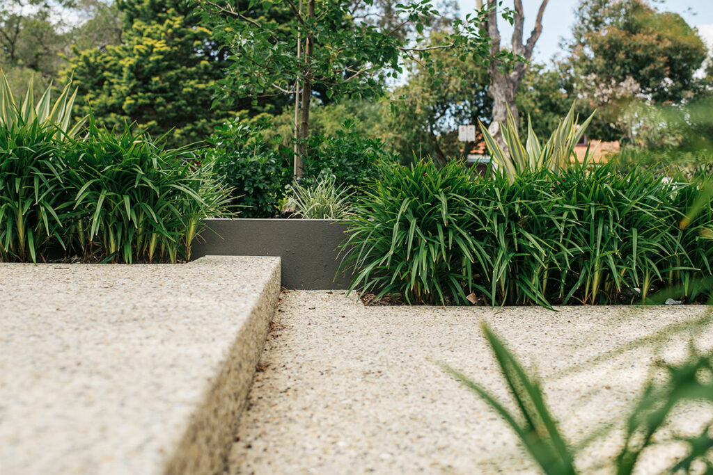 Aggregate Pavers bordered by native plants in Perth